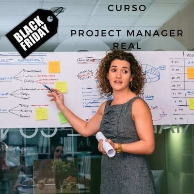project manager real